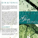 Carta de Gin Tonics
