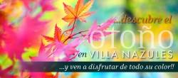 banner-otoño