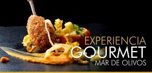 Experiencia Gourmet