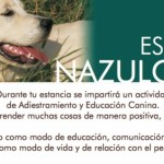 Estancia NazulCan, pensada para tu mascota y para ti...