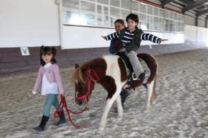 Equestrian Kids
