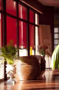 La Café cafetería hotel Villa Nazules