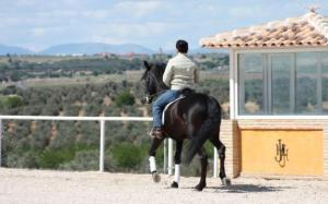 Horse riding in Toledo, Spain